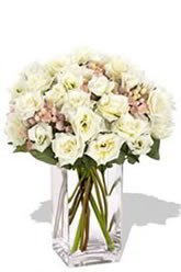 Creamy White Spray Roses